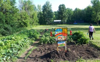Tims Camps in the Community – Part 2